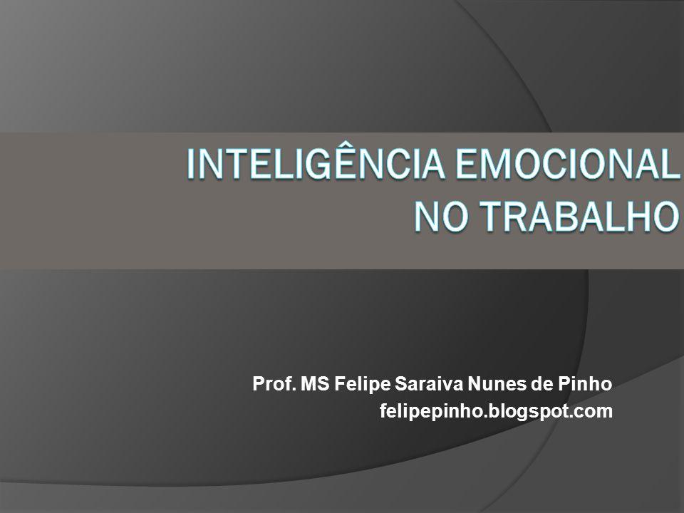 Prof. MS Felipe Saraiva Nunes de Pinho felipepinho.blogspot.com
