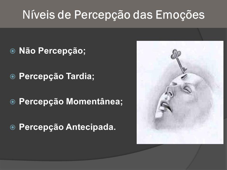 Níveis de Percepção das Emoções Não Percepção; Percepção Tardia; Percepção Momentânea; Percepção Antecipada.