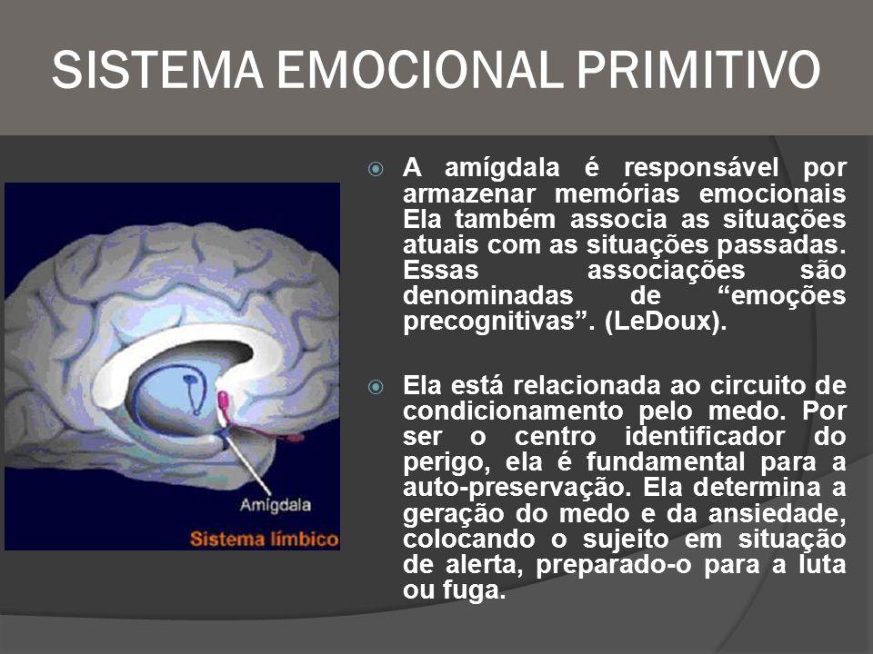 SISTEMA EMOCIONAL PRIMITIVO A amígdala é responsável por armazenar memórias emocionais Ela também associa as situações atuais com as situações passada