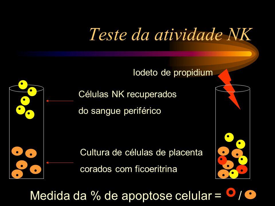 Teste da atividade NK Cultura de células de placenta corados com ficoeritrina Células NK recuperados do sangue periférico Iodeto de propidium Medida d