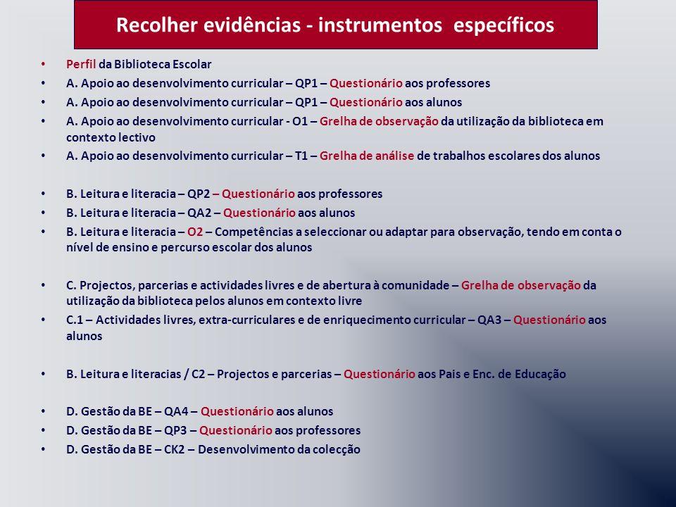Identificar perfil de desempenho IndicadoresFactores Críticos de Sucesso Recolha de Evidências Acções para melhoria/Exemplos Apontam para as zonas nucleares de intervenção em cada domínio e permitem a aplicação de elementos de medição que irão possibilitar uma apreciação sobre a qualidade da BE.