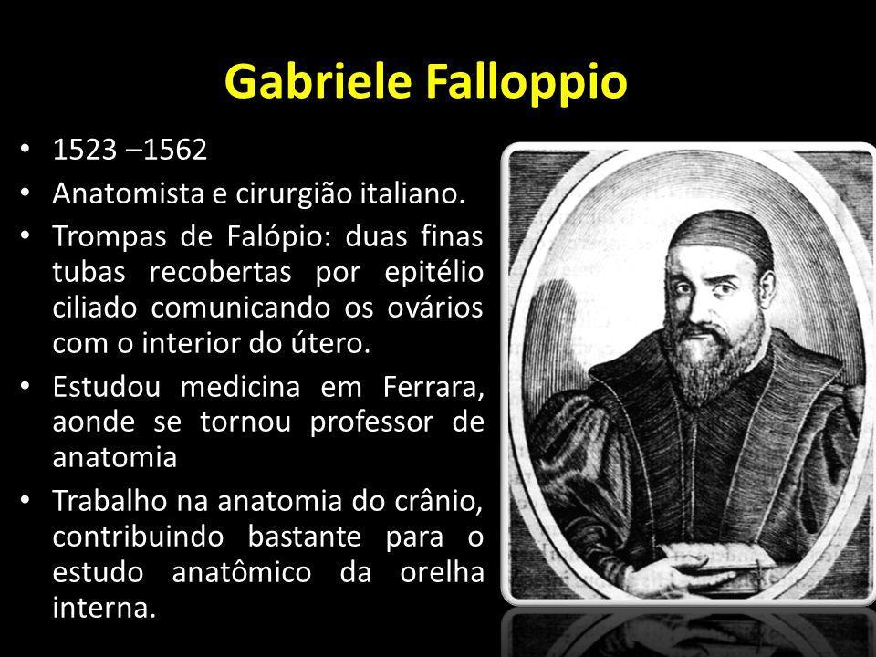 Gabriele Falloppio 1523 –1562 Anatomista e cirurgião italiano. Trompas de Falópio: duas finas tubas recobertas por epitélio ciliado comunicando os ová
