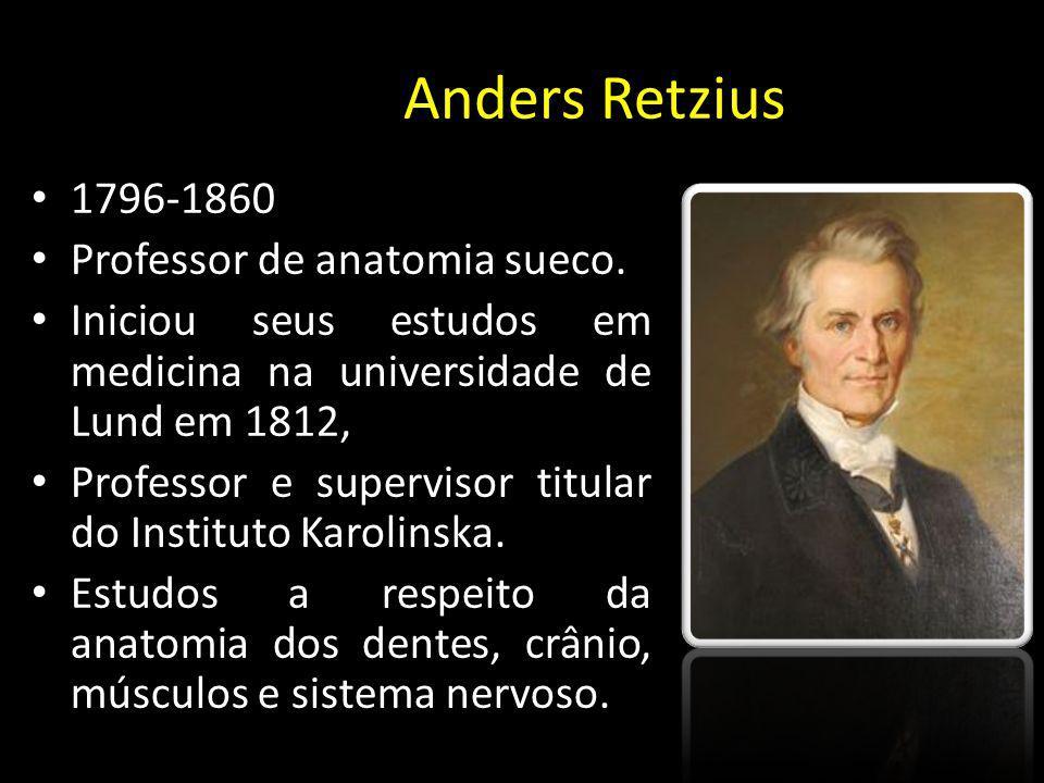 Anders Retzius) 1796-1860 Professor de anatomia sueco. Iniciou seus estudos em medicina na universidade de Lund em 1812, Professor e supervisor titula