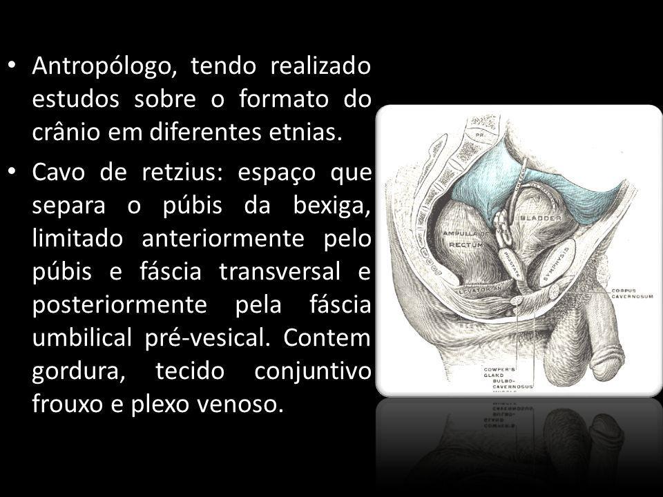 Antropólogo, tendo realizado estudos sobre o formato do crânio em diferentes etnias. Cavo de retzius: espaço que separa o púbis da bexiga, limitado an
