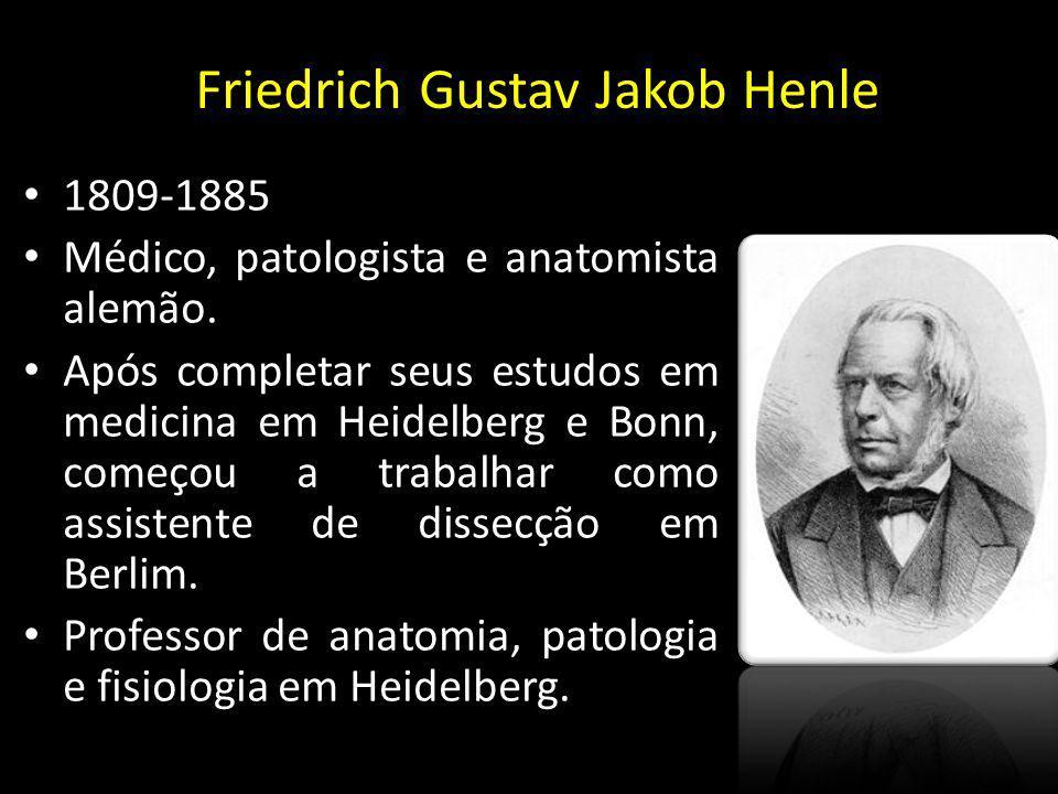 Friedrich Gustav Jakob Henle 1809-1885 Médico, patologista e anatomista alemão. Após completar seus estudos em medicina em Heidelberg e Bonn, começou