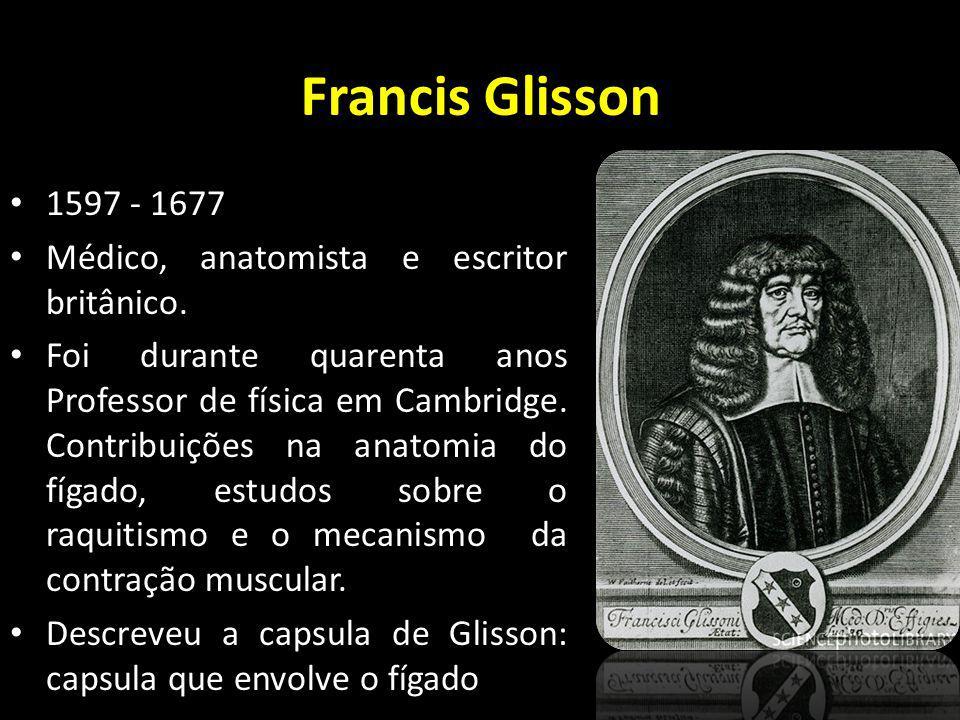 Francis Glisson 1597 - 1677 Médico, anatomista e escritor britânico. Foi durante quarenta anos Professor de física em Cambridge. Contribuições na anat