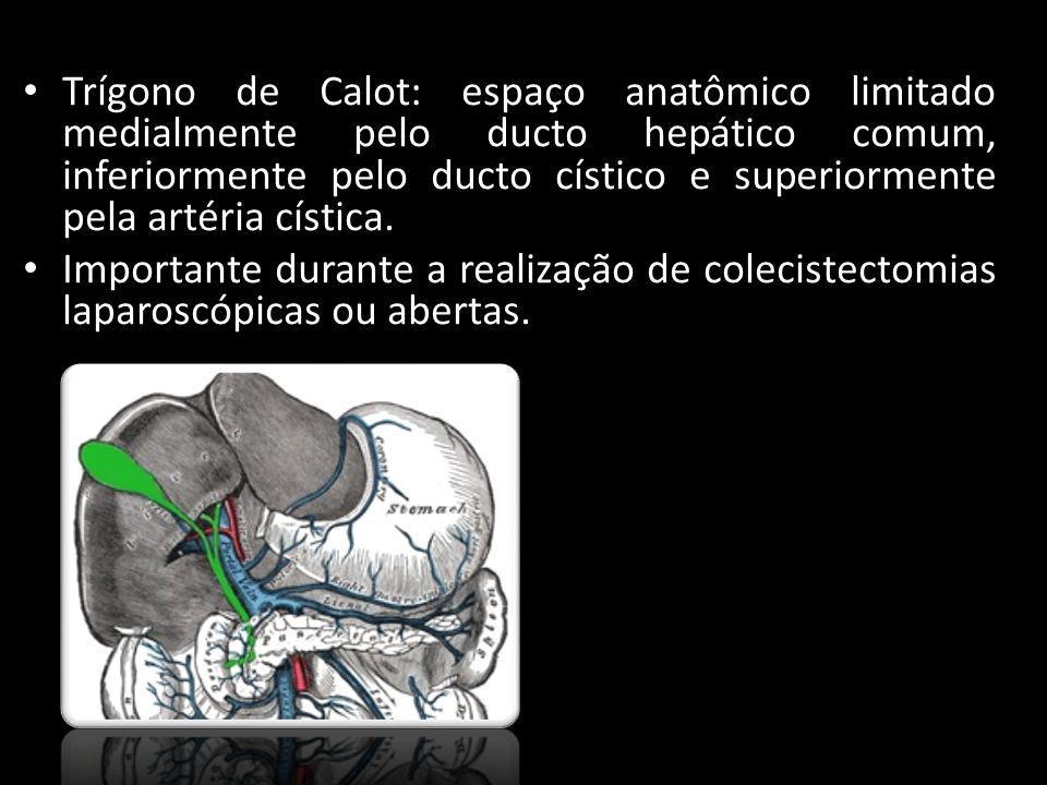 Trígono de Calot: espaço anatômico limitado medialmente pelo ducto hepático comum, inferiormente pelo ducto cístico e superiormente pela artéria císti