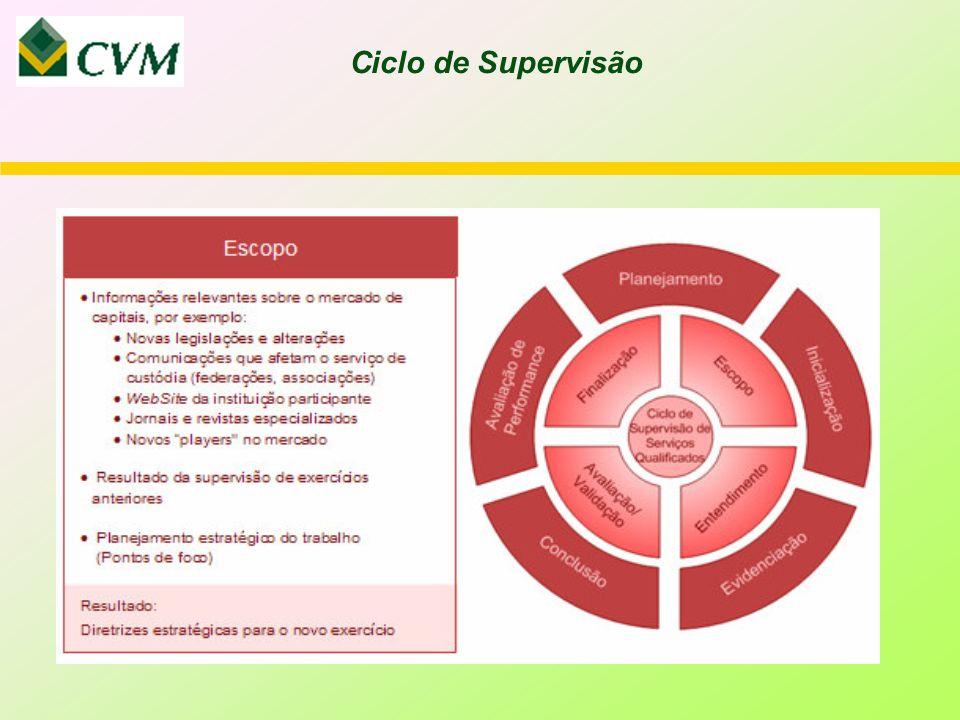 Ciclo de Supervisão