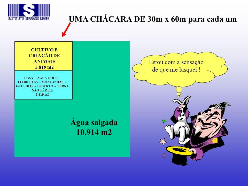 Água salgada 10.914 m2 CASA – ÁGUA DOCE – FLORESTAS – MONTANHAS – GELEIRAS – DESERTO – TERRA NÃO FÉRTIL 1.819 m2 CULTIVO E CRIAÇÃO DE ANIMAIS 1.819 m2