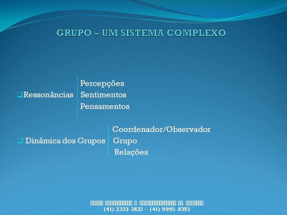 Percepções Ressonâncias Sentimentos Pensamentos Coordenador/Observador Dinâmica dos Grupos Grupo Relações PUCCI Consultoria e Desenvolvimento de Pesso