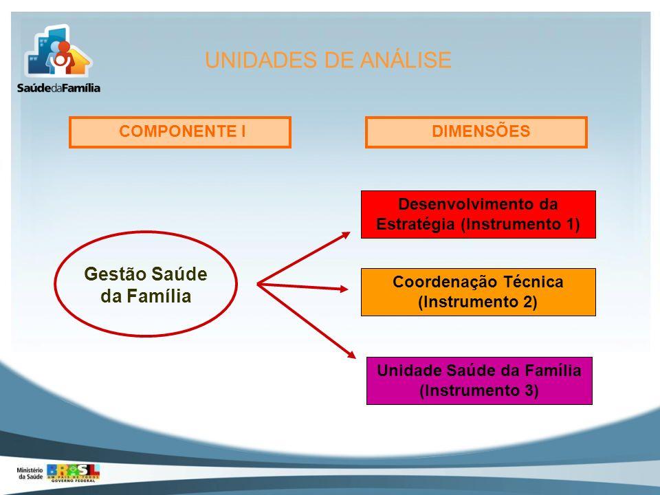 COMPONENTE I DIMENSÕES Gestão Saúde da Família Unidade Saúde da Família (Instrumento 3) Coordenação Técnica (Instrumento 2) Desenvolvimento da Estraté