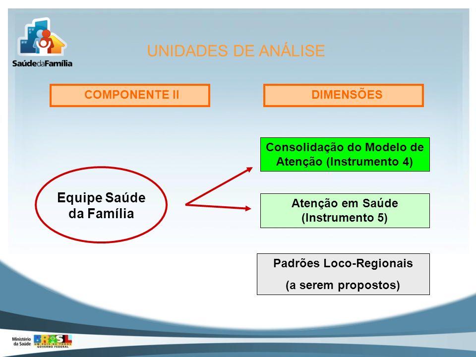 Equipe Saúde da Família Padrões Loco-Regionais (a serem propostos) Atenção em Saúde (Instrumento 5) Consolidação do Modelo de Atenção (Instrumento 4)