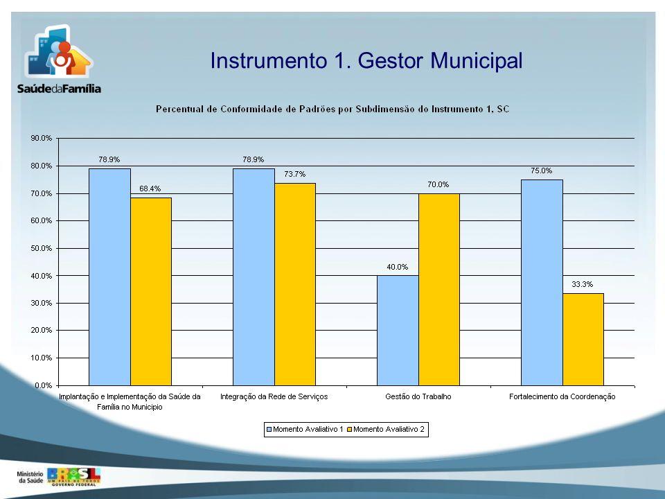 Instrumento 1. Gestor Municipal