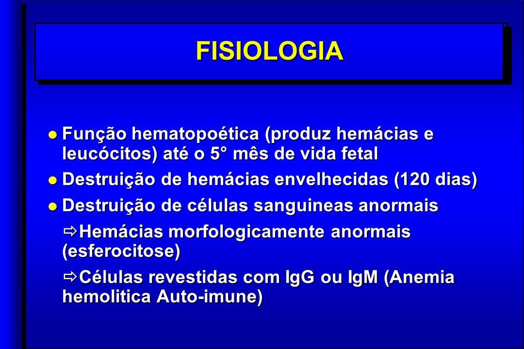 l Função hematopoética (produz hemácias e leucócitos) até o 5° mês de vida fetal l Destruição de hemácias envelhecidas (120 dias) l Destruição de células sanguineas anormais Hemácias morfologicamente anormais (esferocitose) Hemácias morfologicamente anormais (esferocitose) Células revestidas com IgG ou IgM (Anemia hemolitica Auto-imune) Células revestidas com IgG ou IgM (Anemia hemolitica Auto-imune) l Função hematopoética (produz hemácias e leucócitos) até o 5° mês de vida fetal l Destruição de hemácias envelhecidas (120 dias) l Destruição de células sanguineas anormais Hemácias morfologicamente anormais (esferocitose) Hemácias morfologicamente anormais (esferocitose) Células revestidas com IgG ou IgM (Anemia hemolitica Auto-imune) Células revestidas com IgG ou IgM (Anemia hemolitica Auto-imune) FISIOLOGIAFISIOLOGIA