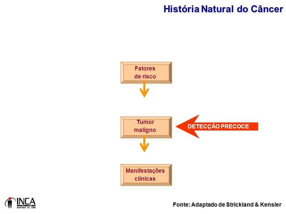 Fatores de risco Tumor malígno Manifestações clínicas Fonte: Adaptado de Strickland & Kensler HistóriaNatural do Câncer História Natural do Câncer DET