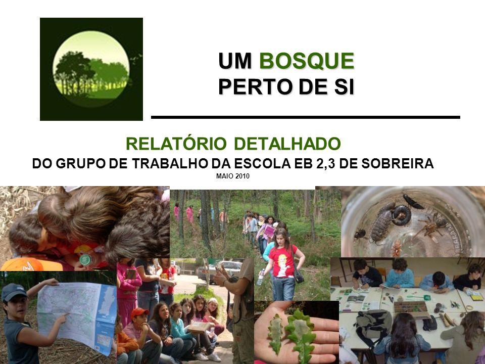 UM BOSQUE PERTO DE SI RELATÓRIO DETALHADO DO GRUPO DE TRABALHO DA ESCOLA EB 2,3 DE SOBREIRA MAIO 2010