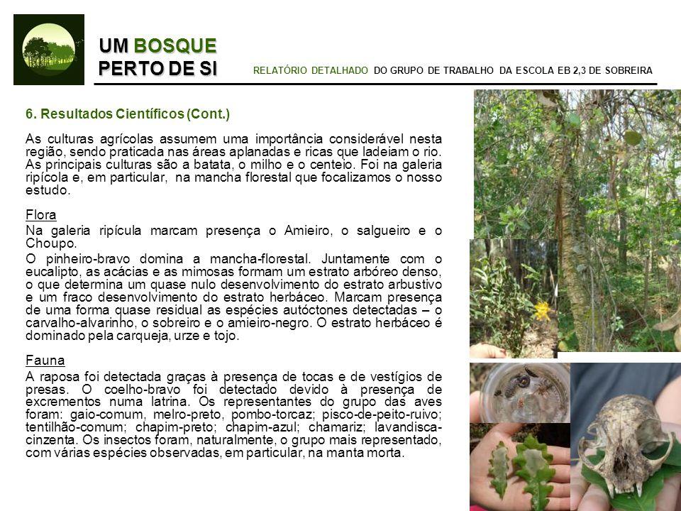 6. Resultados Científicos (Cont.) As culturas agrícolas assumem uma importância considerável nesta região, sendo praticada nas áreas aplanadas e ricas
