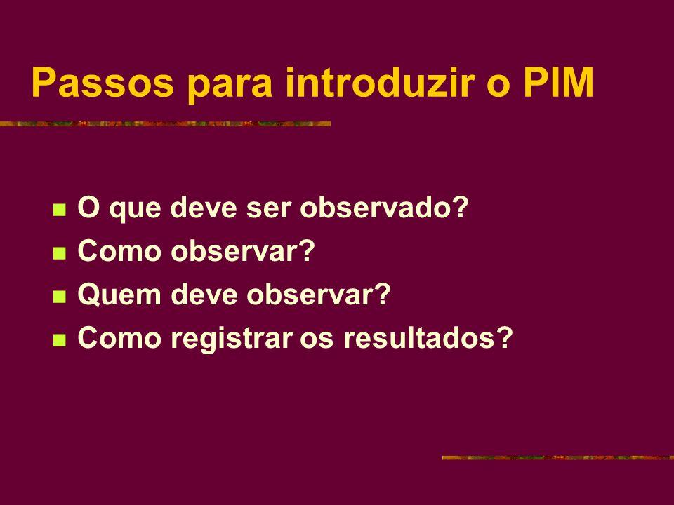 Passos para introduzir o PIM O que deve ser observado.