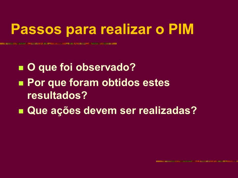 Passos para realizar o PIM O que foi observado. Por que foram obtidos estes resultados.