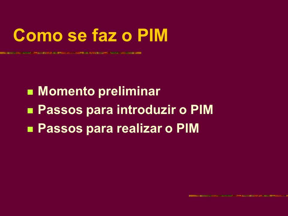 Como se faz o PIM Momento preliminar Passos para introduzir o PIM Passos para realizar o PIM