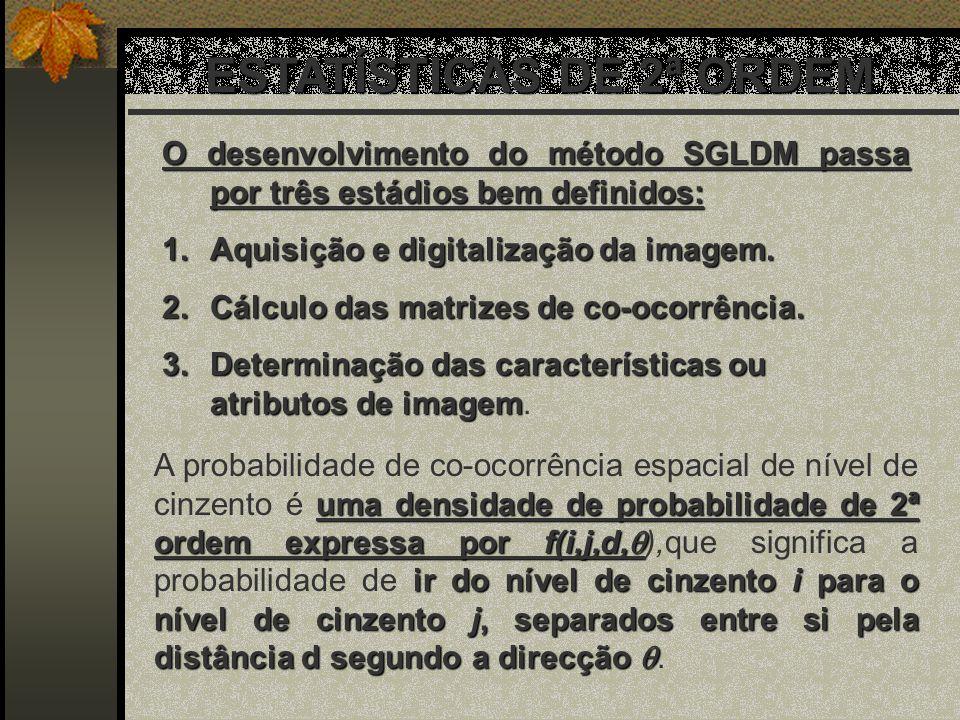 ESTATÍSTICAS DE 2ª ORDEM O desenvolvimento do método SGLDM passa por três estádios bem definidos: 1.Aquisição e digitalização da imagem. 2.Cálculo das