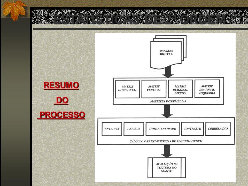 ESTATÍSTICAS DE 2ª ORDEM RESUMO DO DO PROCESSO PROCESSO