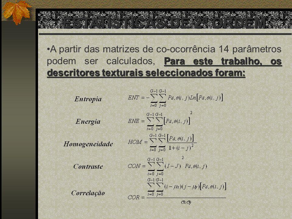 ESTATÍSTICAS DE 2ª ORDEM Para este trabalho, os descritores texturais seleccionados foram:A partir das matrizes de co-ocorrência 14 parâmetros podem s