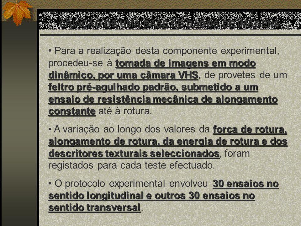 CRIAÇÃO DE UMA BASE DE DADOS DE IMAGENS tomada de imagens em modo dinâmico, por uma câmara VHS feltro pré-agulhado padrão, submetido a um ensaio de re