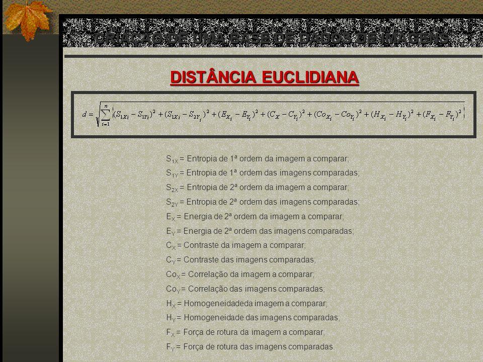 CRIAÇÃO DE UMA BASE DE DADOS DE IMAGENS DISTÂNCIA EUCLIDIANA S 1X = Entropia de 1ª ordem da imagem a comparar; S 1Y = Entropia de 1ª ordem das imagens
