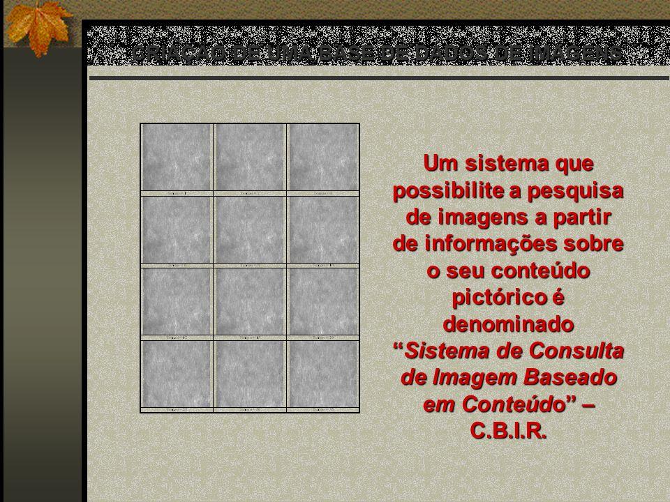 CRIAÇÃO DE UMA BASE DE DADOS DE IMAGENS Um sistema que possibilite a pesquisa de imagens a partir de informações sobre o seu conteúdo pictórico é deno