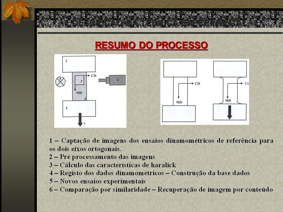 DESCRIÇÃO DA TÉCNICA EXPERIMENTAL RESUMO DO PROCESSO