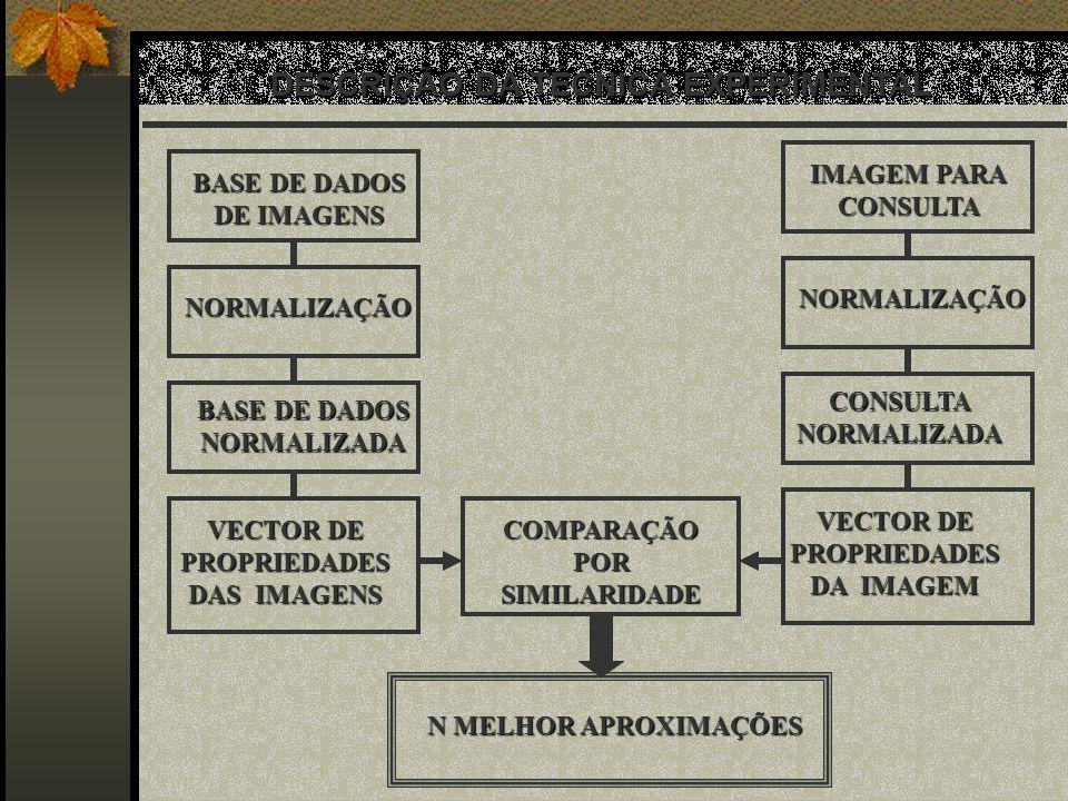 DESCRIÇÃO DA TÉCNICA EXPERIMENTAL BASE DE DADOS DE IMAGENS IMAGEM PARA CONSULTA NORMALIZAÇÃO NORMALIZAÇÃO BASE DE DADOS NORMALIZADA CONSULTA NORMALIZA