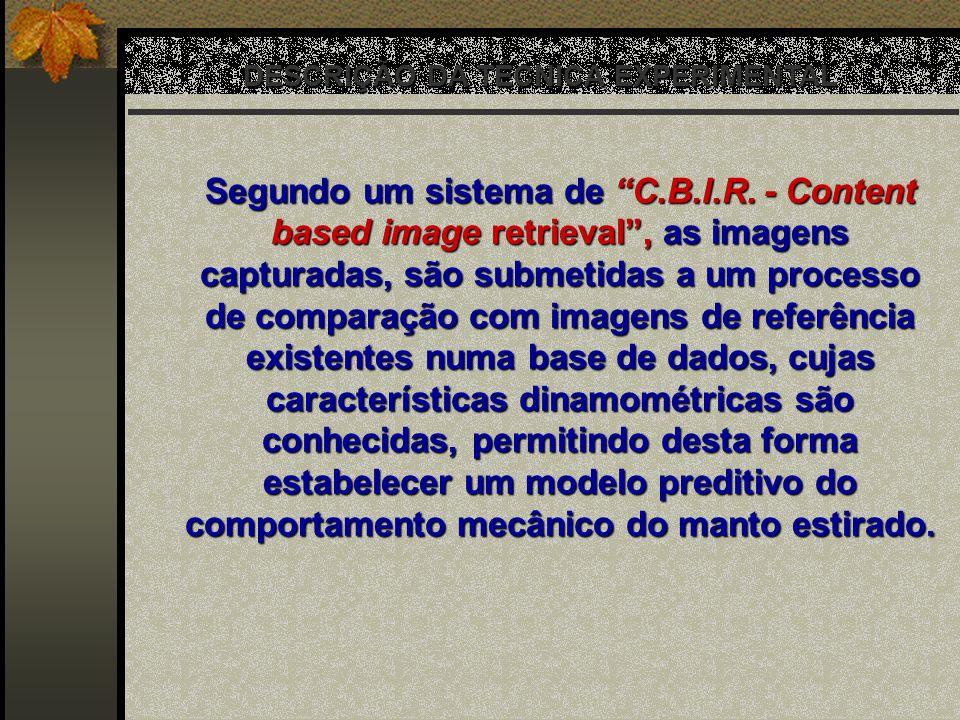 DESCRIÇÃO DA TÉCNICA EXPERIMENTAL Segundo um sistema de C.B.I.R. - Content based image retrieval, as imagens capturadas, são submetidas a um processo