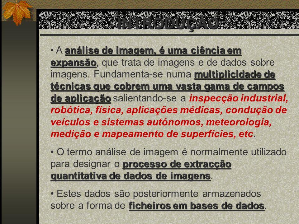 RESULTADOS Direcção MD
