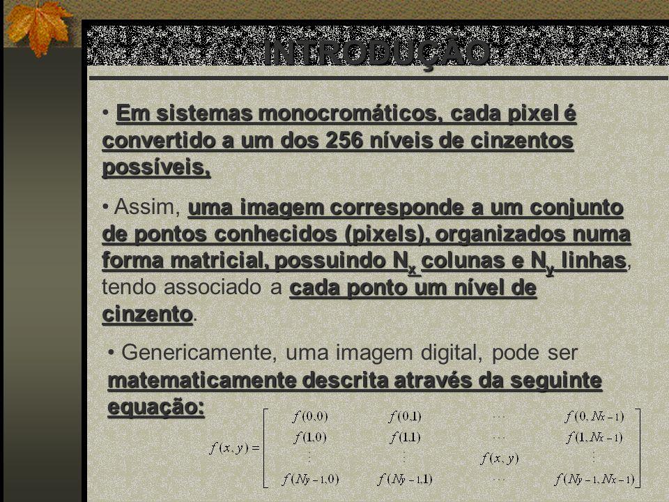 Em sistemas monocromáticos, cada pixel é convertido a um dos 256 níveis de cinzentos possíveis, uma imagem corresponde a um conjunto de pontos conheci