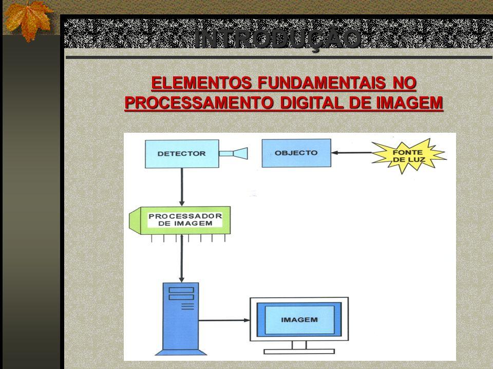 INTRODUÇÃO ELEMENTOS FUNDAMENTAIS NO PROCESSAMENTO DIGITAL DE IMAGEM