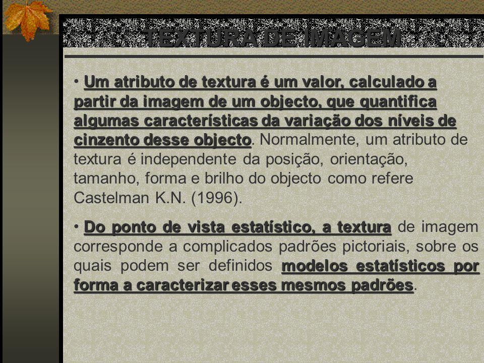 TEXTURA DE IMAGEM Um atributo de textura é um valor, calculado a partir da imagem de um objecto, que quantifica algumas características da variação do