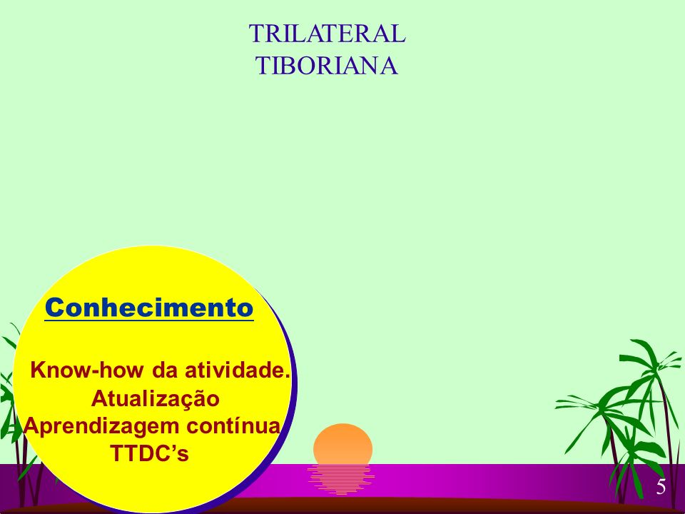 Conhecimento Know-how da atividade. Atualização Aprendizagem contínua TTDCs TRILATERAL TIBORIANA 5