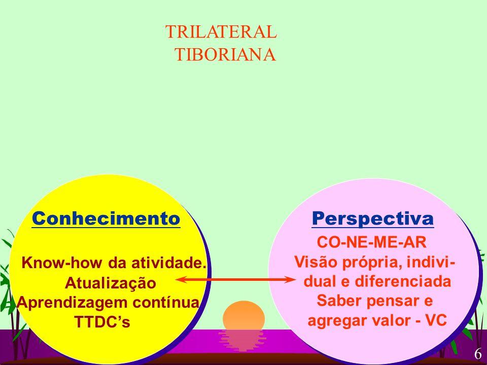 ConhecimentoPerspectiva Know-how da atividade. Atualização Aprendizagem contínua TTDCs CO-NE-ME-AR Visão própria, indivi- dual e diferenciada Saber pe