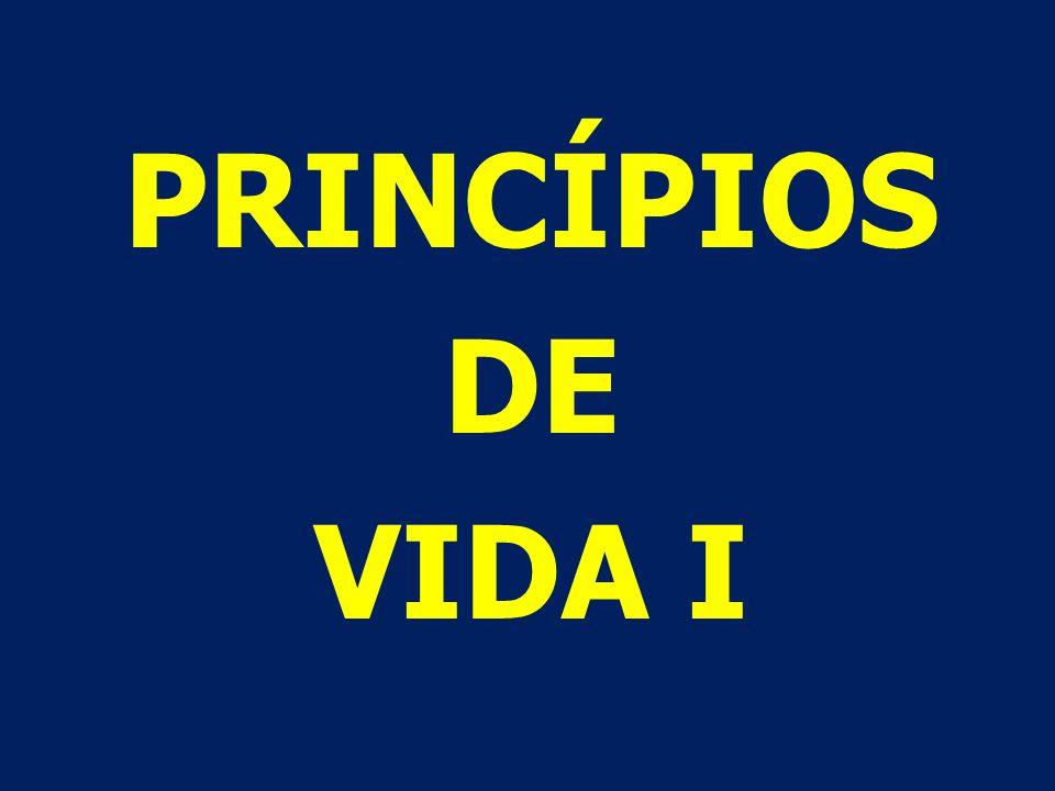PRINCÍPIOS = O PONTO DE VISTA DE DEUS SOBRE A VIDA; REGRAS QUE REGEM A VIDA