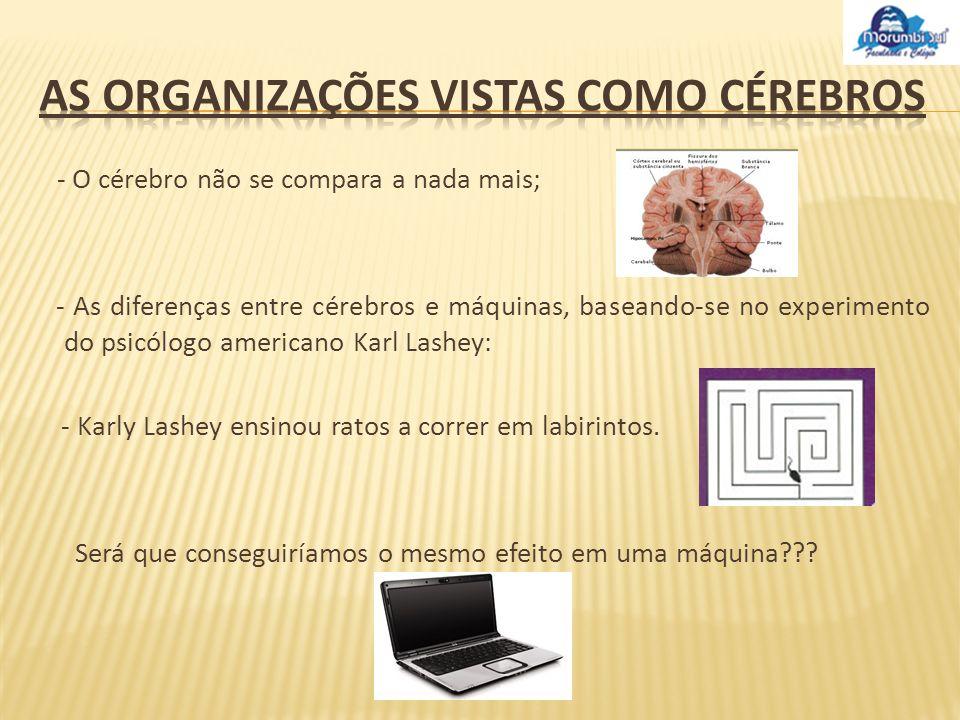 Em vários estilos de organizações, não existe uma única que possa ter um desempenho similar ao do cérebro.