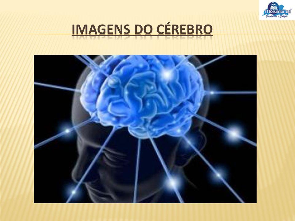 A maior parte dos pensamentos e realizações, bem como as suas mais profundas emoções, podem provir do cérebro.