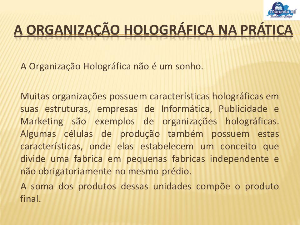 A Organização Holográfica não é um sonho. Muitas organizações possuem características holográficas em suas estruturas, empresas de Informática, Public