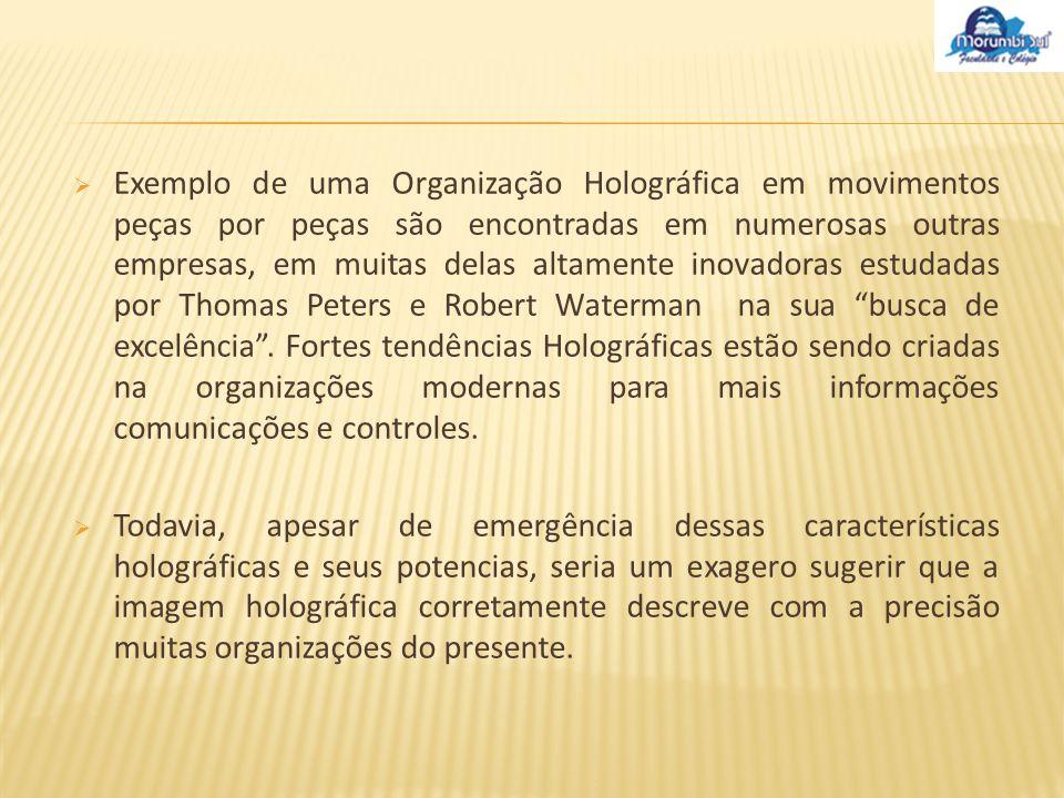 Exemplo de uma Organização Holográfica em movimentos peças por peças são encontradas em numerosas outras empresas, em muitas delas altamente inovadora