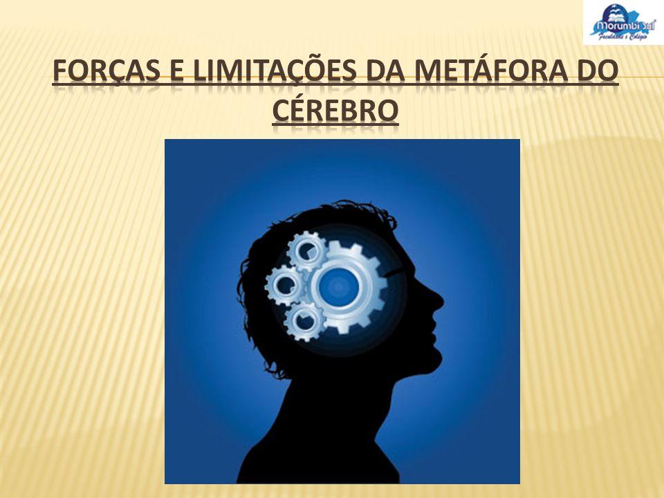 As contribuições à compreensão da aprendizagem organizacional e às suas capacidades de auto-organização.