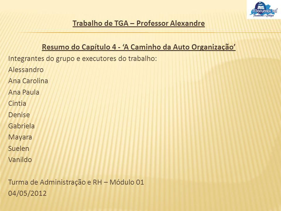 Trabalho de TGA – Professor Alexandre Resumo do Capítulo 4 - A Caminho da Auto Organização Integrantes do grupo e executores do trabalho: Alessandro A