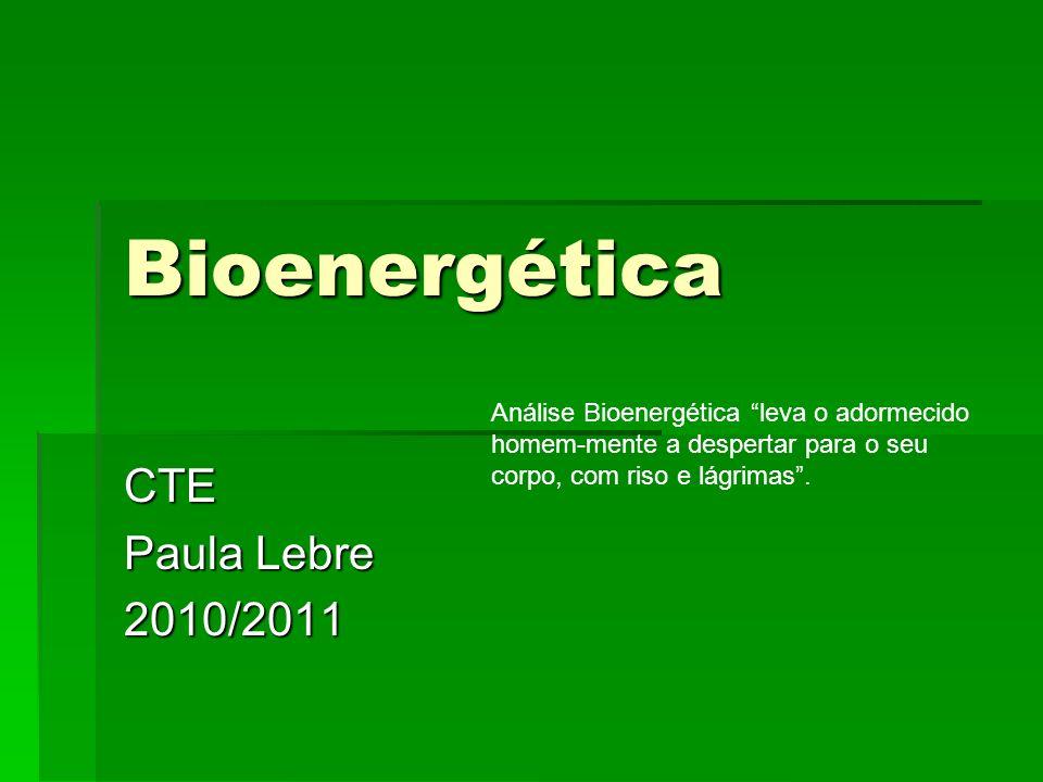 Bioenergética CTE Paula Lebre 2010/2011 Análise Bioenergética leva o adormecido homem-mente a despertar para o seu corpo, com riso e lágrimas.