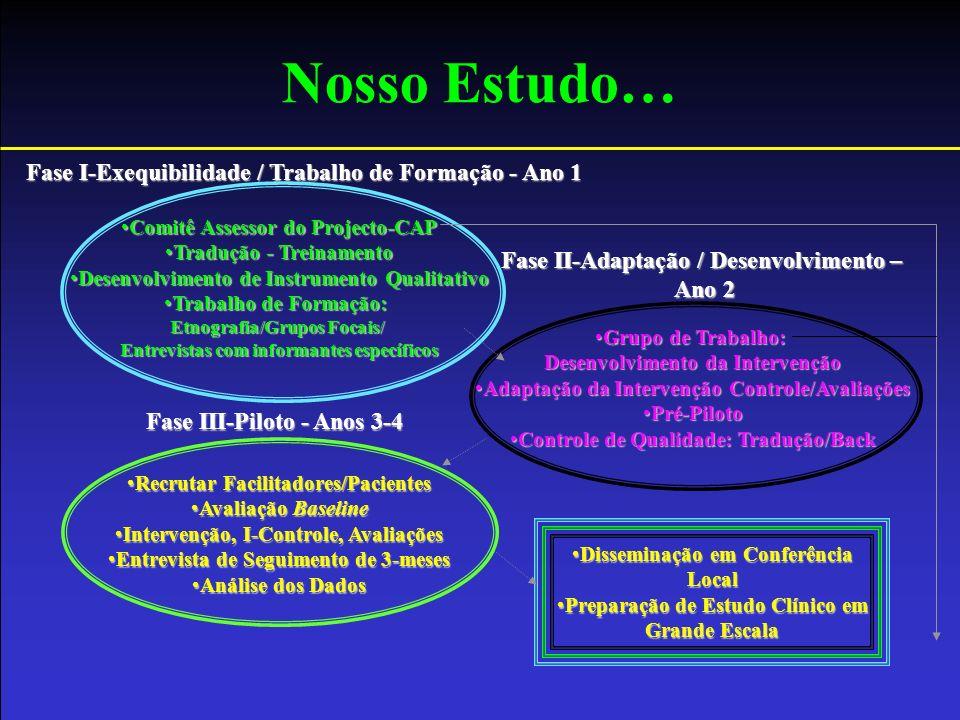 Nosso Estudo… Fase I-Exequibilidade / Trabalho de Formação - Ano 1 Fase II-Adaptação / Desenvolvimento – Ano 2 Fase III-Piloto - Anos 3-4 Comitê Asses