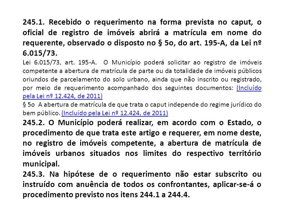 245.1. Recebido o requerimento na forma prevista no caput, o oficial de registro de imóveis abrirá a matrícula em nome do requerente, observado o disp