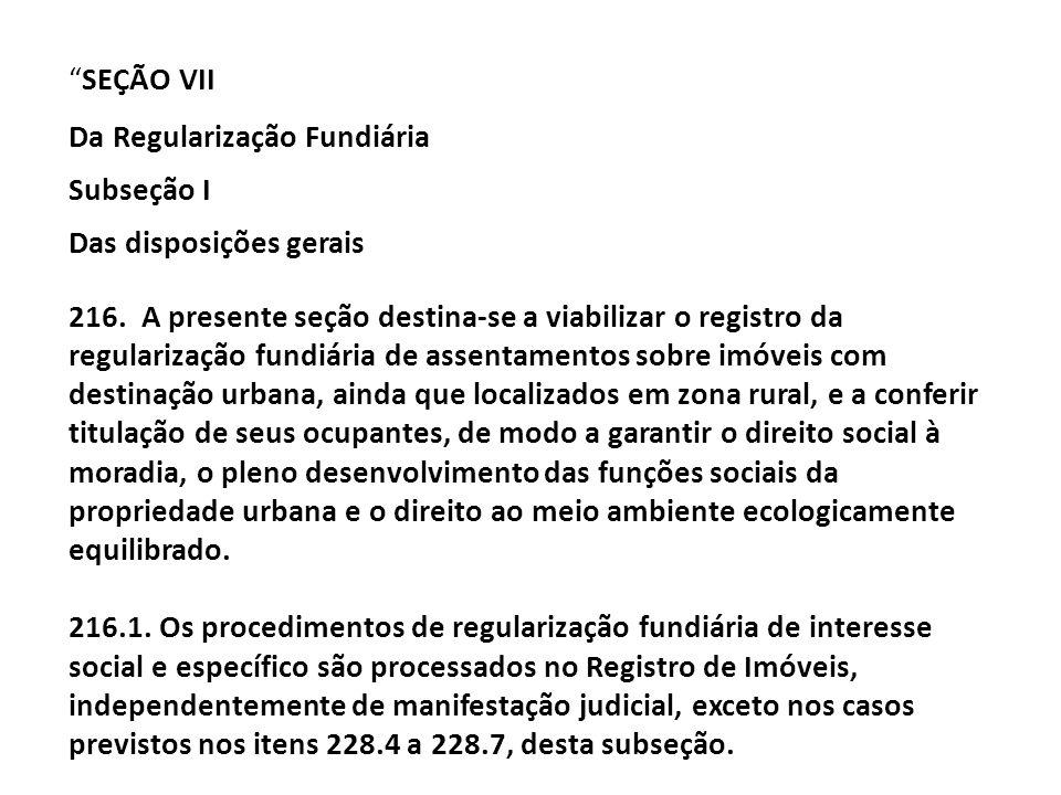 SEÇÃO VII Da Regularização Fundiária Subseção I Das disposições gerais 216. A presente seção destina-se a viabilizar o registro da regularização fundi